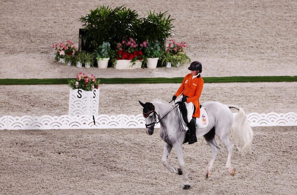 Koně na OH